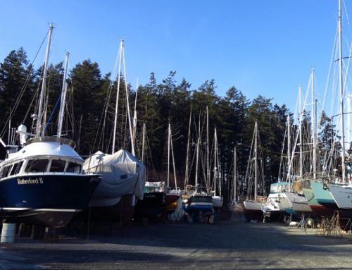 Live Aboard Sailors Spend Winter at Canoe Cove