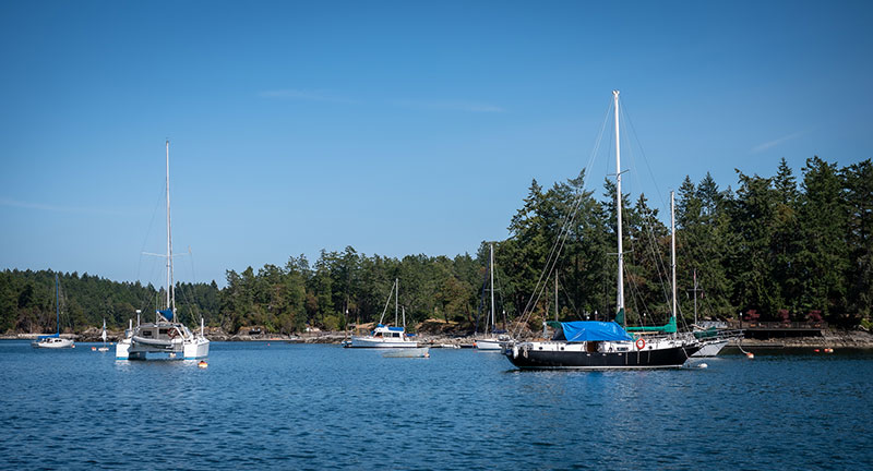 Boating in Canoe Cove Marina - Gallery